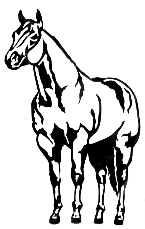 864x1360 Halter Horse Clipart
