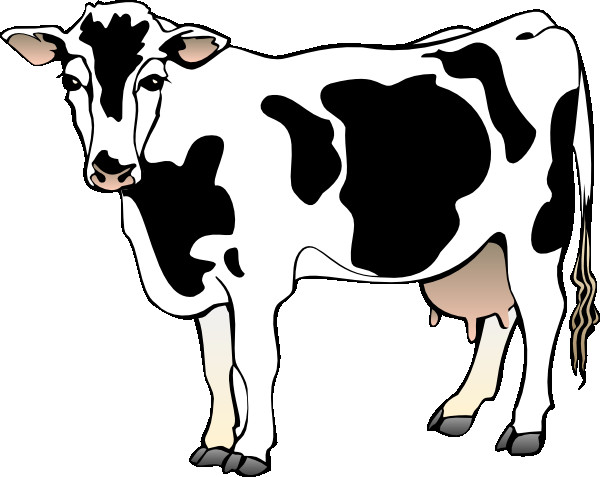 600x477 Horse Head Clipart Cow Clipart Inspirational Horse Line Drawings