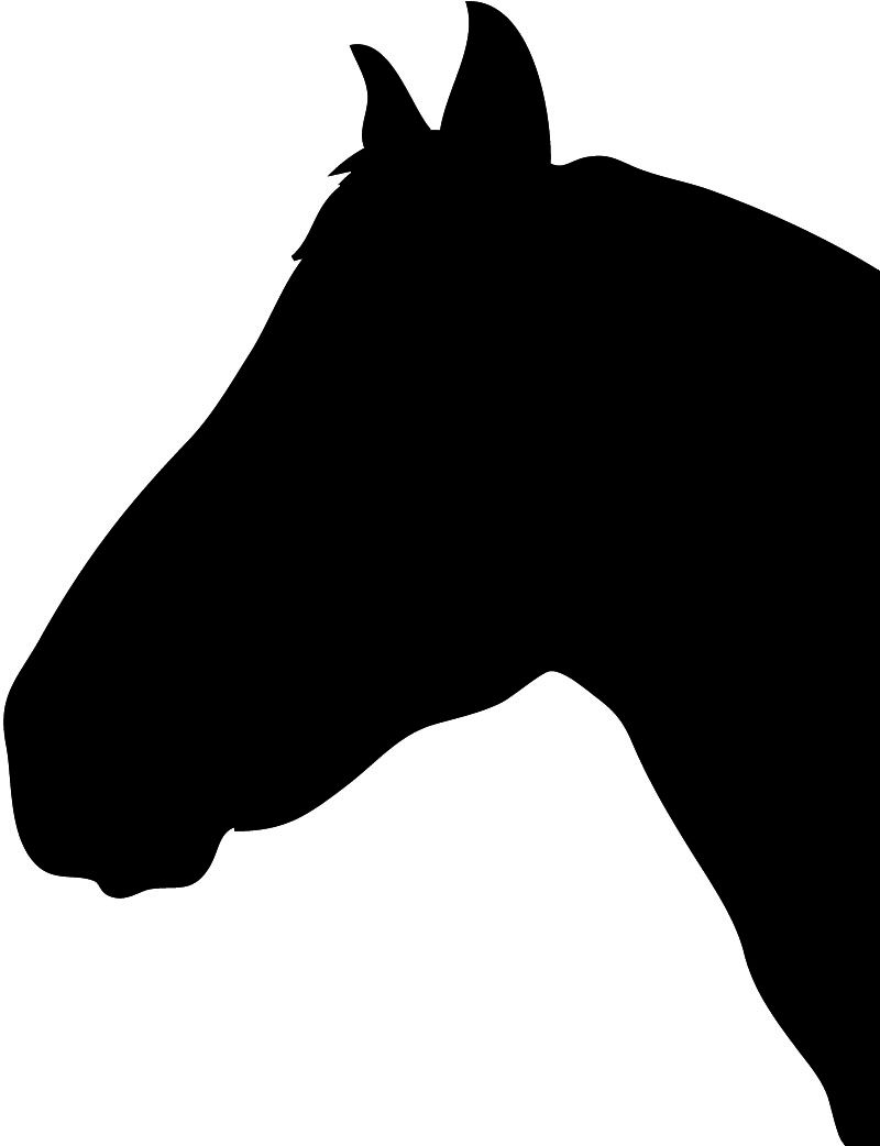 800x1042 horse head silhouette black drawing pattern horse silhouette