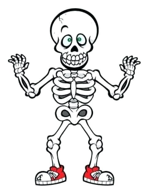 480x640 halloween skeleton skeleton halloween skeleton horse prop plante