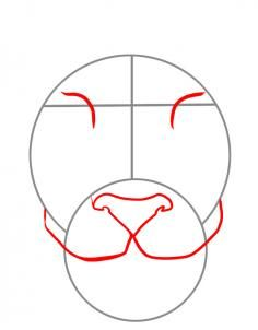 236x302 How To Draw A Tiger Face, Step