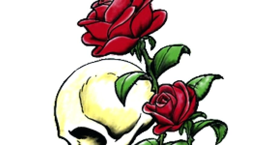 900x480 drawing roses how to draw roses how to draw roses drawing flowers