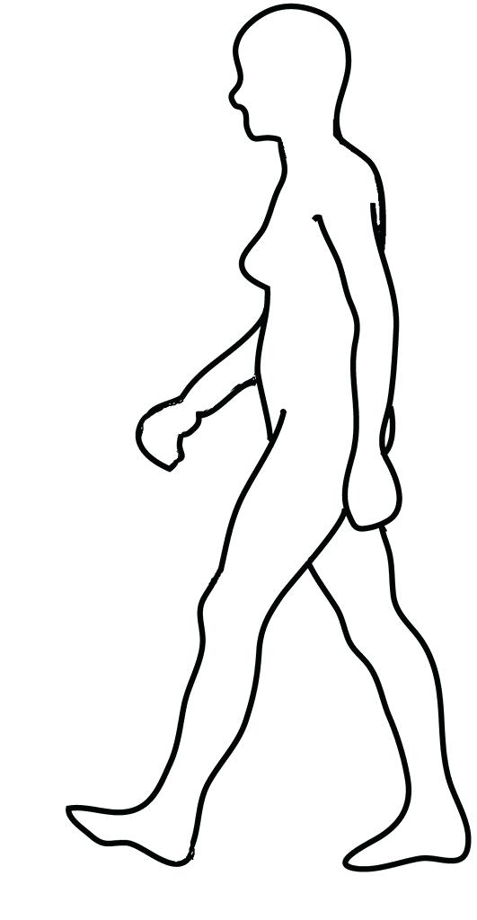 531x1024 outline of a person human body outline printable outline person