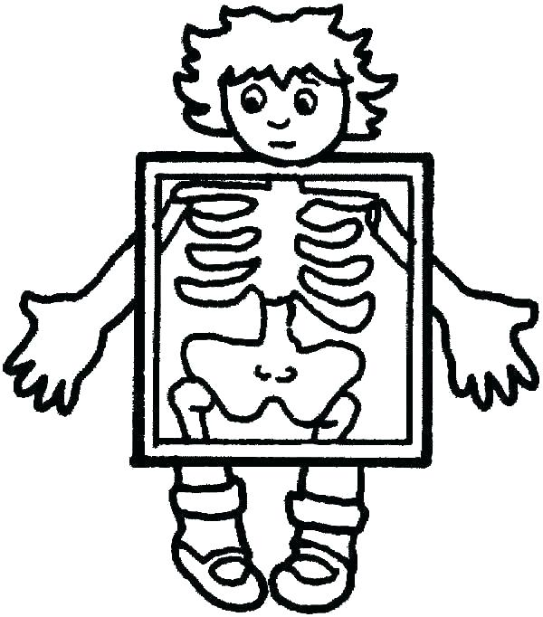 600x682 Body Systems Coloring Pages Digestive System