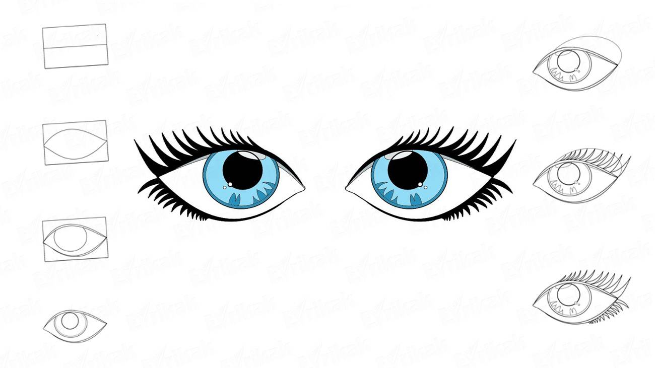 1300x731 How To Draw The Human Eyes Step