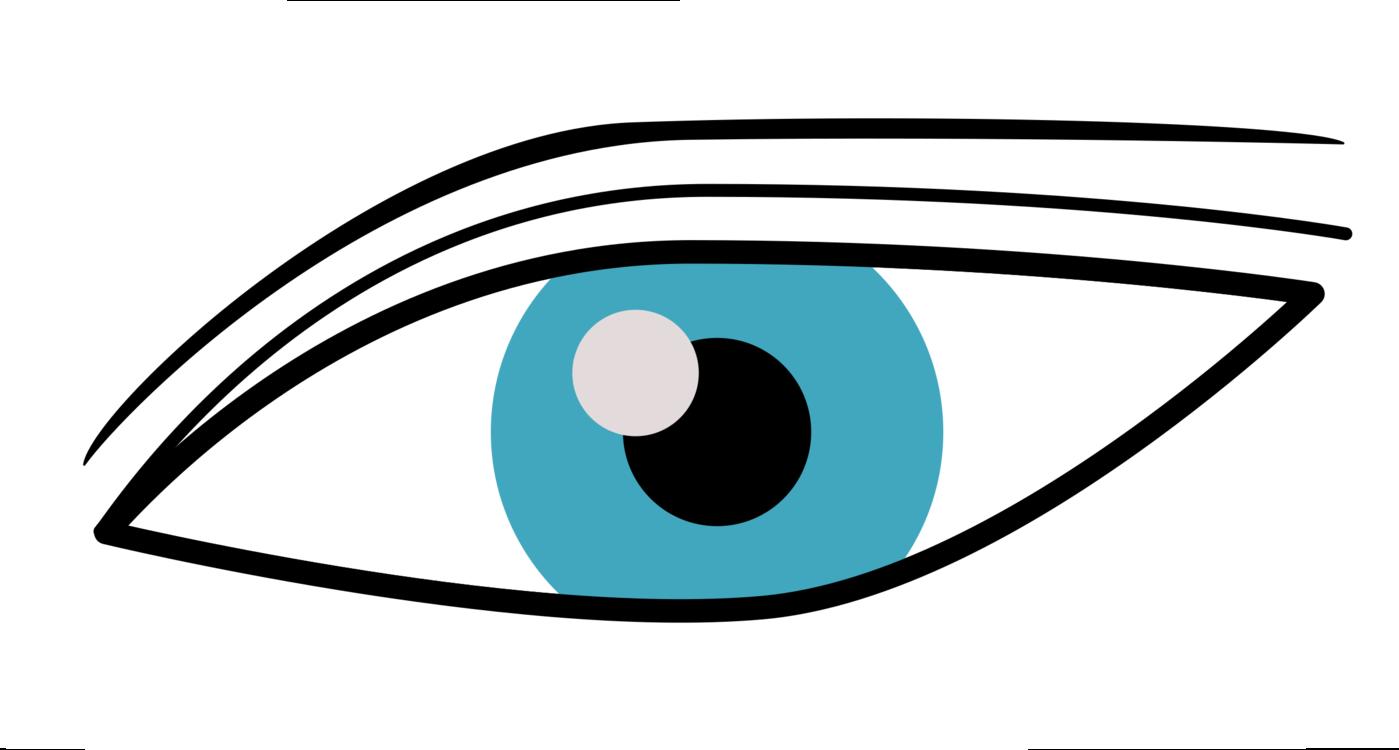 1399x750 Human Eye Eye Color Sense Drawing Cc0