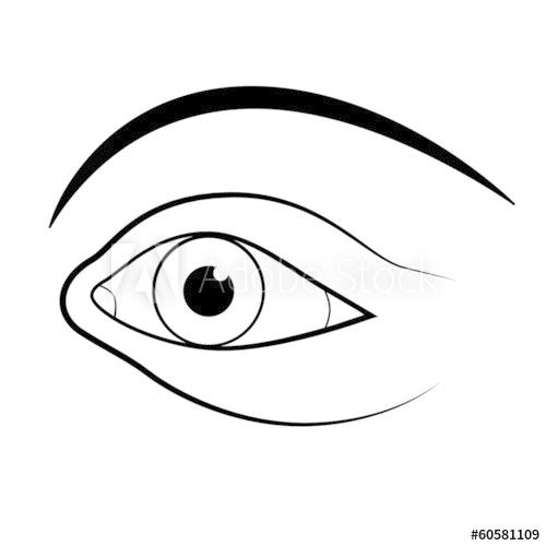 500x500 Abstract Vector Human Eye Illustration