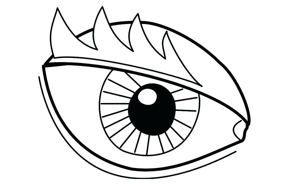 975x620 Human Eye Template