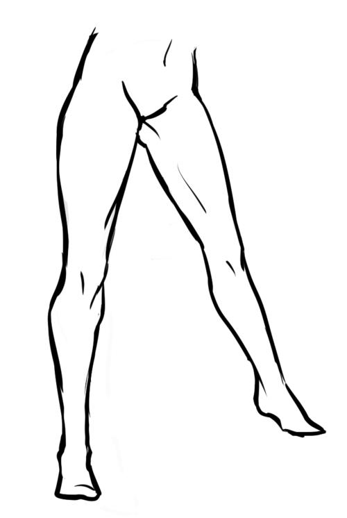 Human Leg Drawing