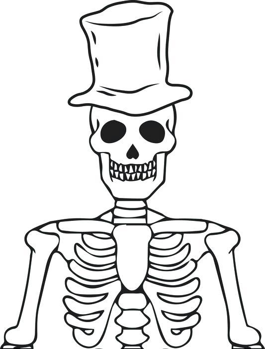 Collection of Skeletal clipart | Free download best Skeletal clipart ...