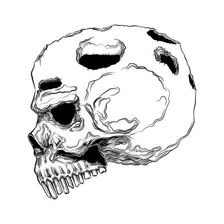 450x450 Human Skull, Anatomically Correct Vector Royalty Free Vector