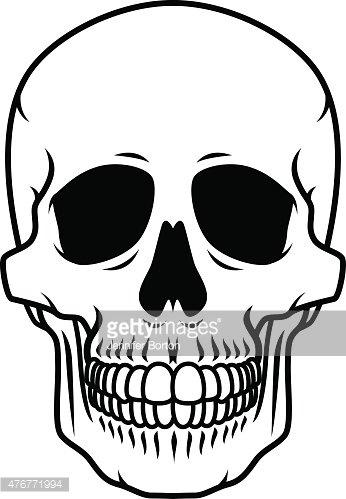 346x499 Human Skull Black And White Line Art Icon Premium Clipart