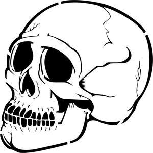 300x300 Human Skull Profile Stencil