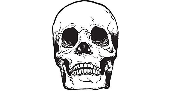 600x350 Vinyl Wall Art Decal Sticker Human Skull Bones Automotive