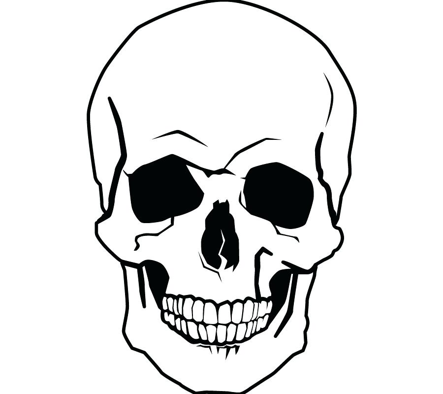 900x800 skull coloring book drawing human skull coloring book skull