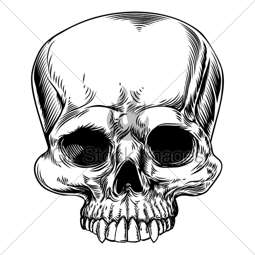 500x500 Skull Drawing Gl Stock Images