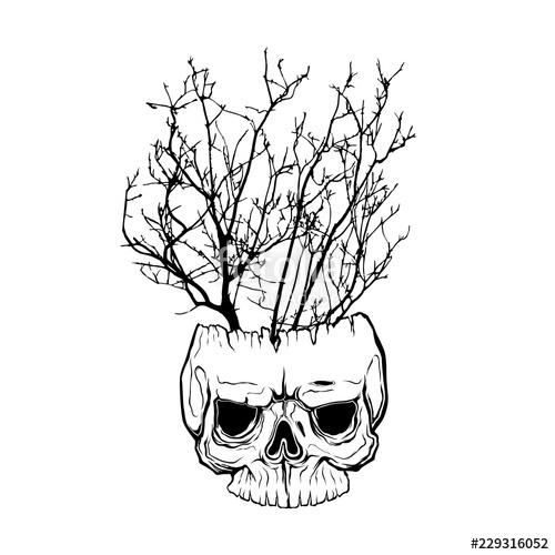 500x500 Tree Branch On Human Skull Isolated Hand Drawn Line Art Vector