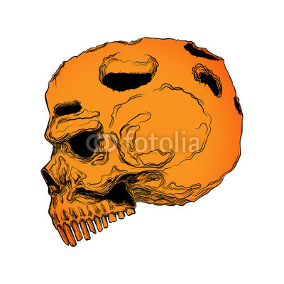 400x400 Anatomically Correct Human Skull Isolated Hand Drawn Line Art