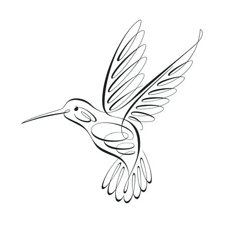 447x450 hummingbird drawing hummingbird drawing simple