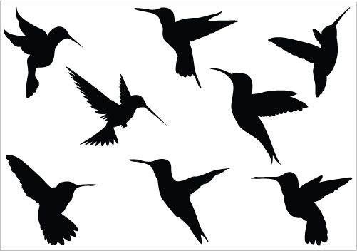 501x352 hummingbird silhouette clipart tattoos hummingbird tattoo