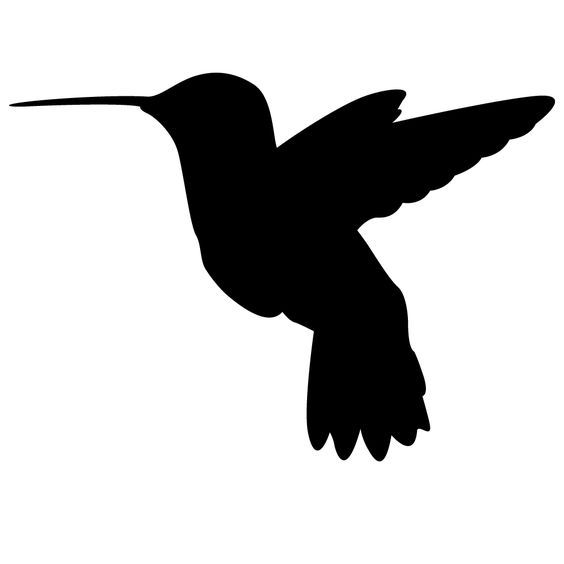 564x564 hummingbird clipart hummingbird outline