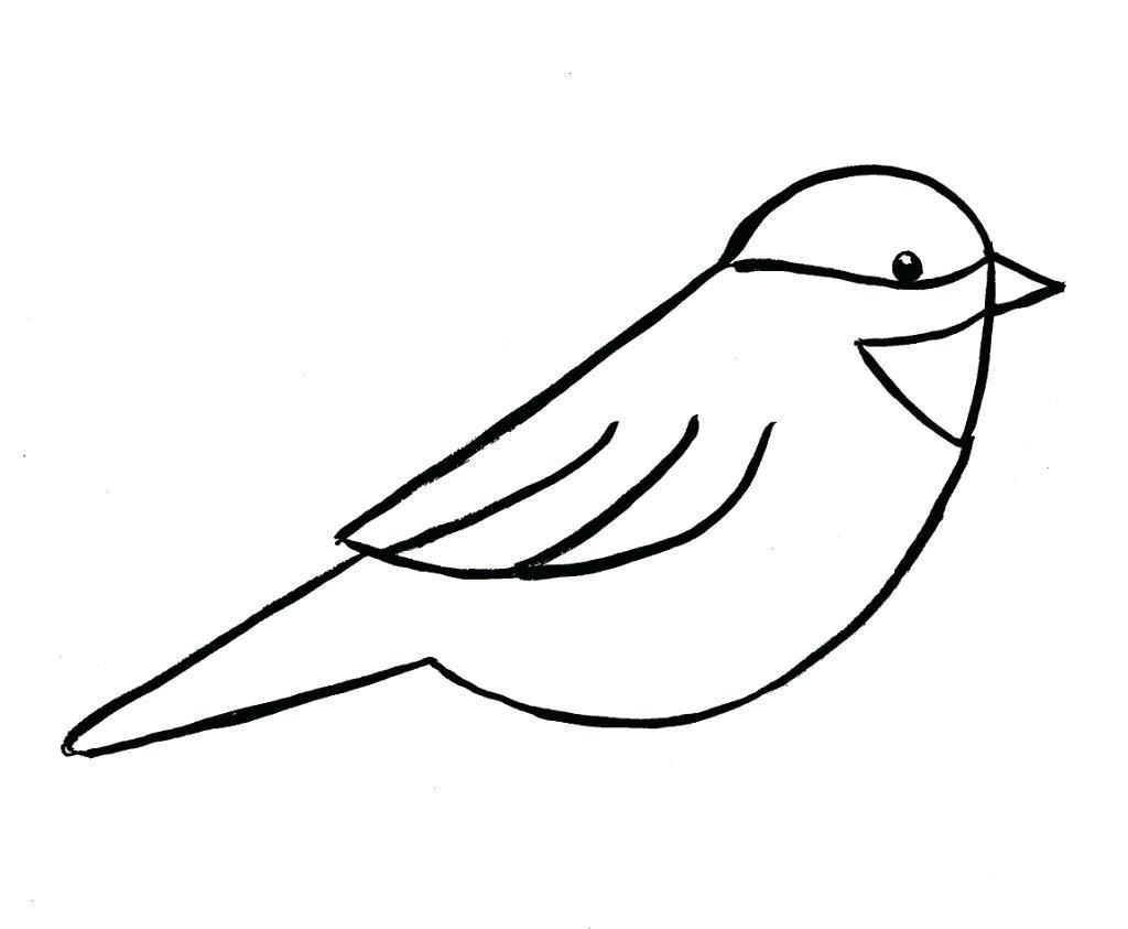 Hummingbird Drawing Outline | Free download best Hummingbird