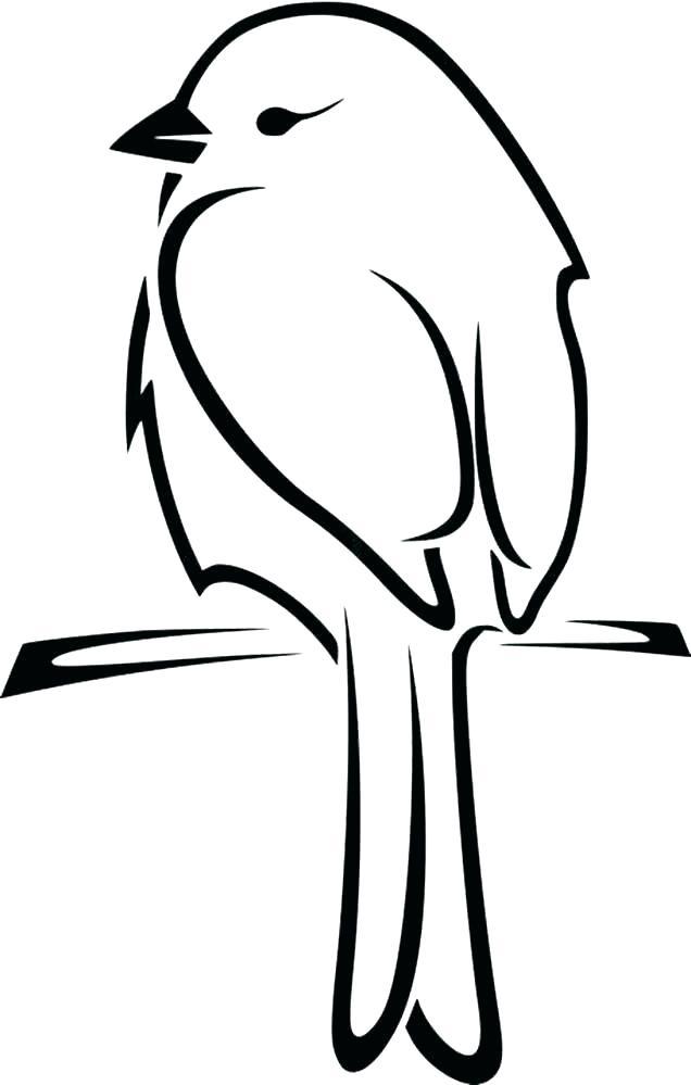 636x999 bird outlines bird outlines cardinal bird drawing outline bird
