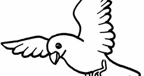 471x250 How To Make A Bird Drawing Step