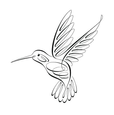 447x450 Hummingbird Drawing Hummingbird Nature Drawings Pictures Drawings
