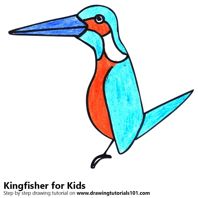 800x800 Learn How To Draw A Kingfisher For Kids