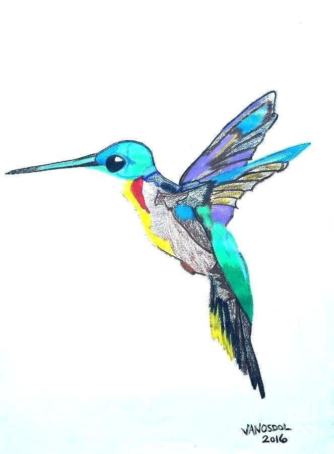 663x900 Drawing Of A Hummingbird