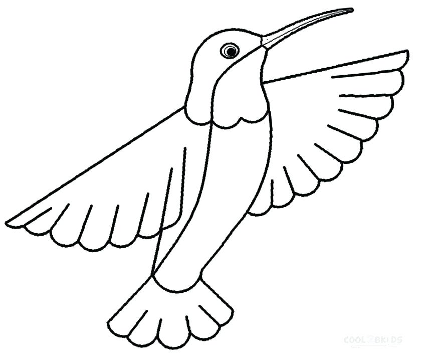 850x718 Hummingbird Colouring Pages
