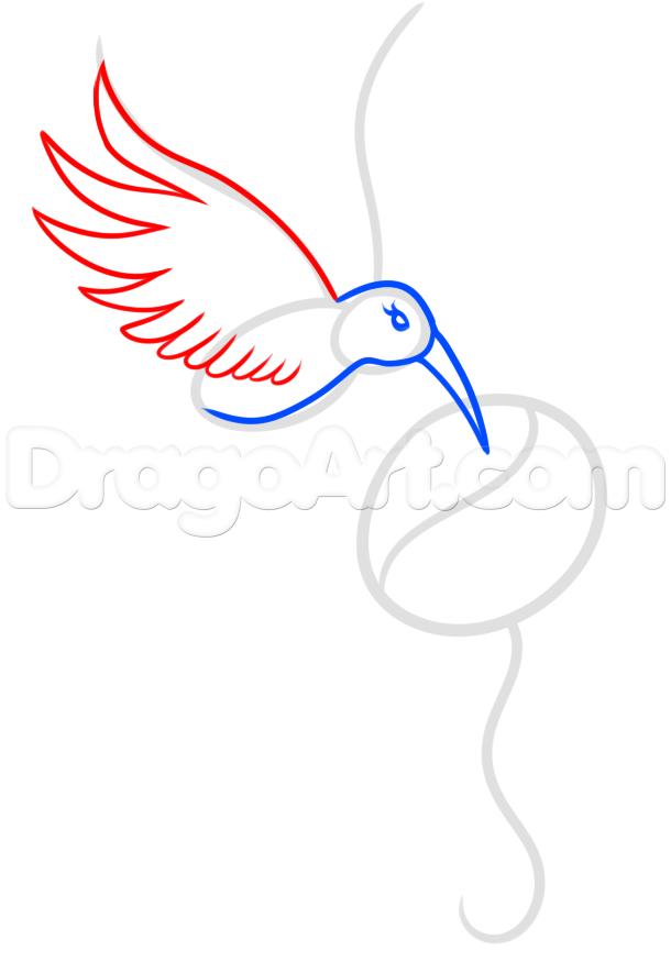610x875 Draw A Hummingbird Tattoo, Step