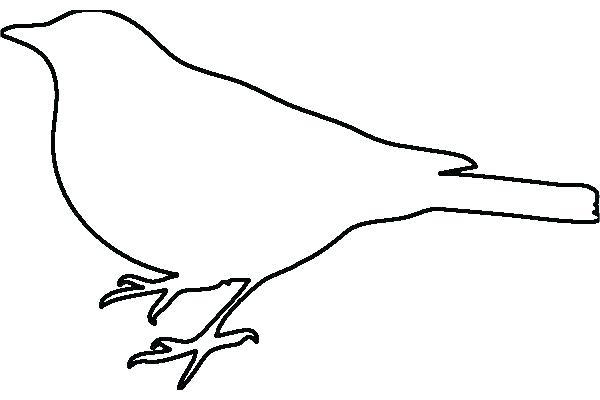 Hummingbird Tattoo Drawing Free Download Best Hummingbird Tattoo