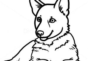 300x210 drawing of a german shepherd dog german shepherd