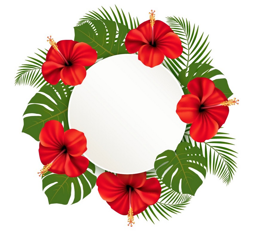 850x774 How To Draw A Wreath Of Tropical Flowers In Adobe Illustrator