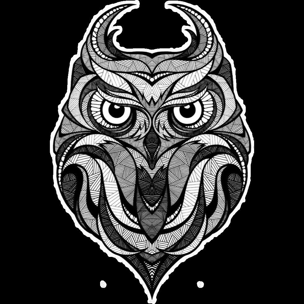981x981 Download Owl Illustrator Drawing Illustration Tattoo Download Hd