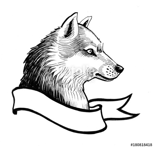 500x481 Husky And Banner Black And White Ink Drawing Stock Photo