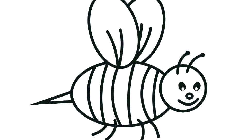 960x544 draw a bumble bee drawn bumblebee killer bee bumblebee line