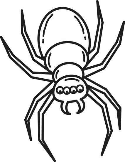 426x550 easy spider drawing easy spider drawing drawn spider web easy draw