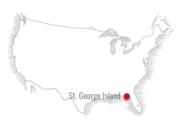 365x252 st george island surrounding area real estate st george