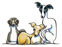 200x151 Stunning Italian Greyhound Drawings And Illustrations For Sale