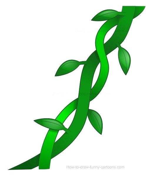 510x600 draw vines drawing vine tree how to draw ivy vines step