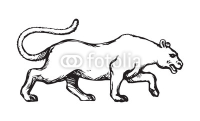400x242 Panther Vector Drawing Buy Photos Ap Images Detailview