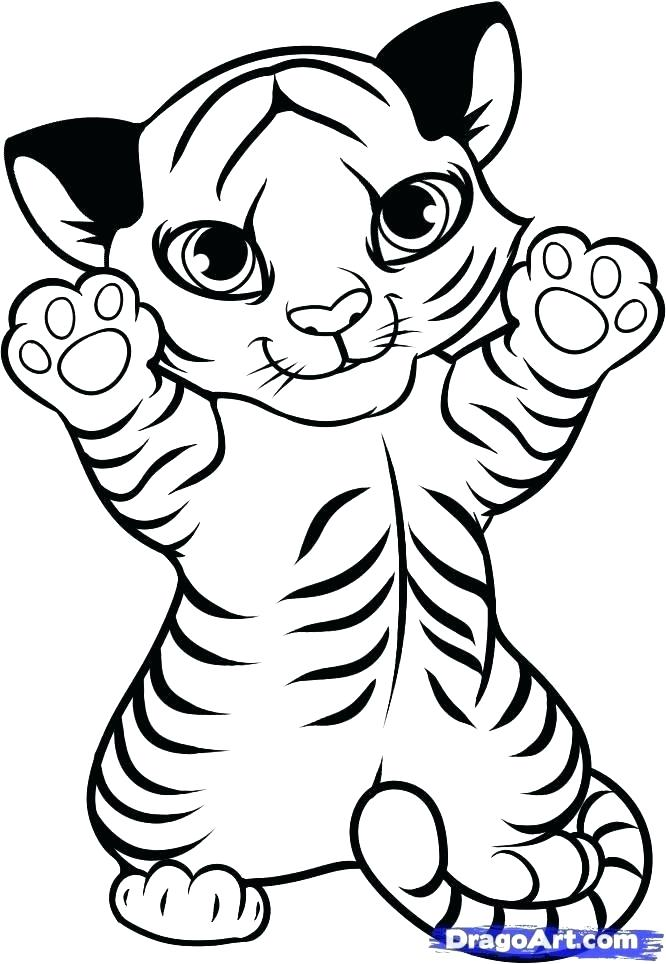 666x964 Baby Jaguar Coloring Pages Baby Jaguar Coloring Pages Coloring