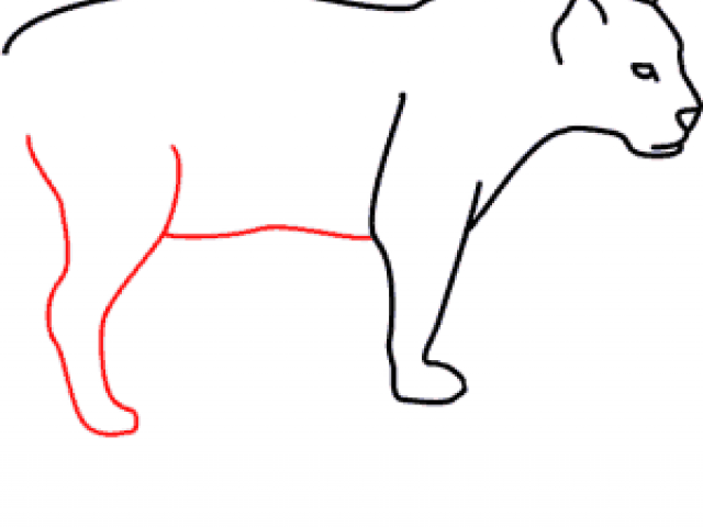 640x480 Free Drawn Jaguar, Download Free Clip Art