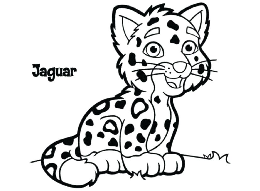 827x609 Jaguar Coloring Pages Printable Drawing Board Weekly Home