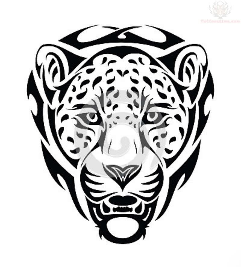 800x888 Jaguar Tribal Design Tattoos Ideas And Designs