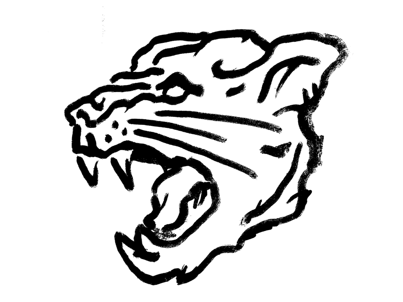 800x600 Panther Head