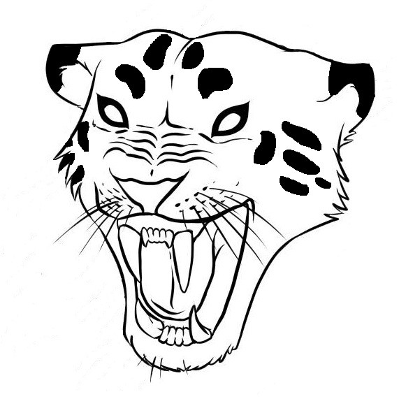 571x571 Cute Colorless Roaring Jaguar Head Tattoo Design